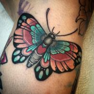 tattoo borboleta old school